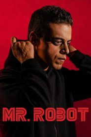 Mr. Robot tvseries download dual audio