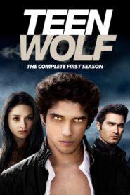 Teen Wolf: Season 1